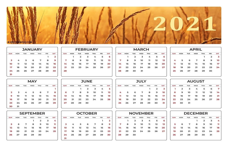 Catch 11X17 Printable Calendar 2021