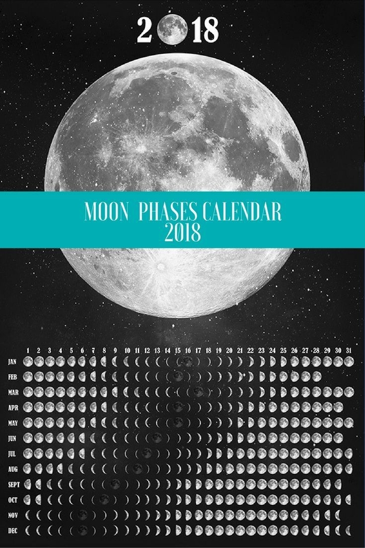 Catch Cycle Of The Moon August 2021
