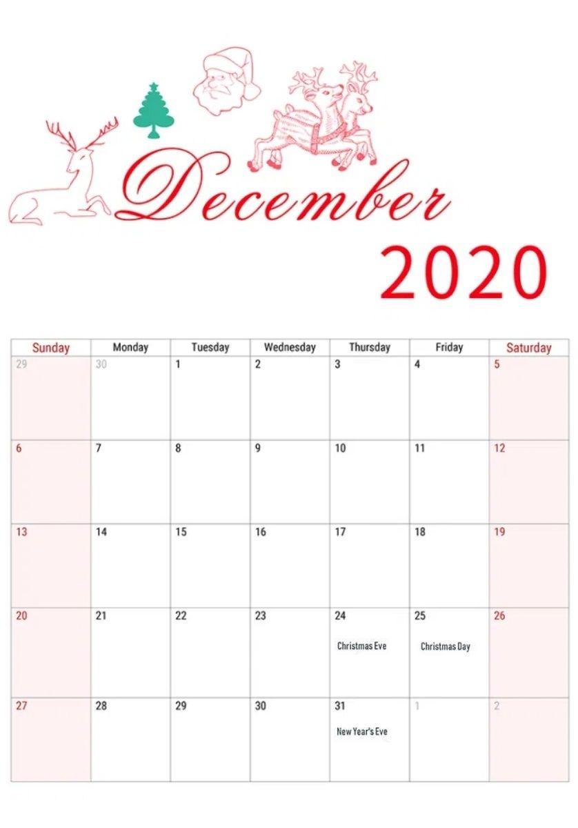 Catch Festive November 2021 Calendar Printable