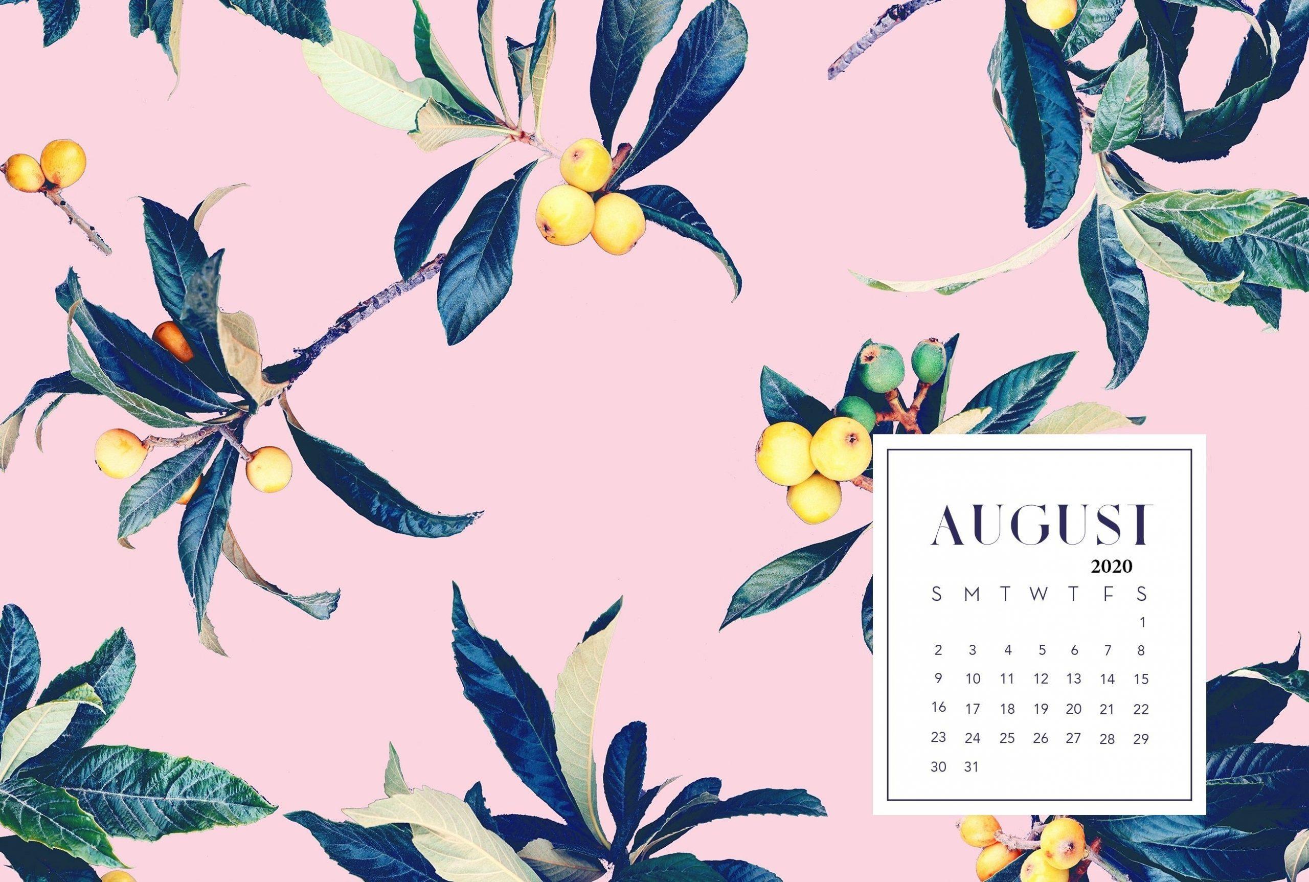 Catch Funny August 2021 Desktop Calendar