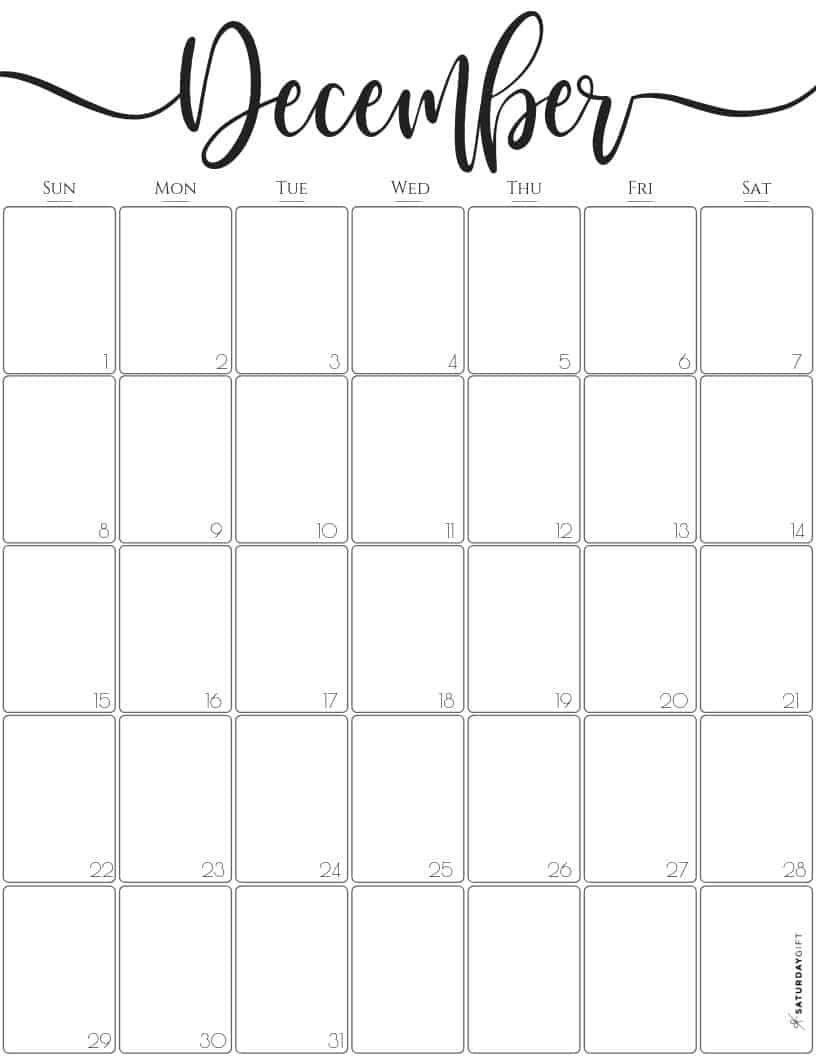 Collect December 2021 Calendar Girly