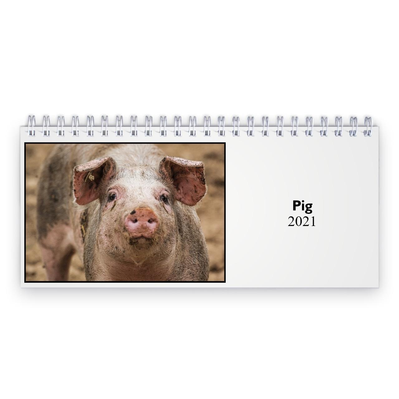 Collect Kalender Met Varkens
