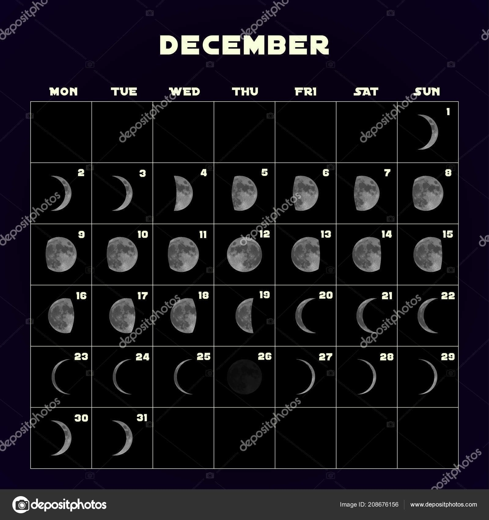 Collect Moon Cycle Calendar Print