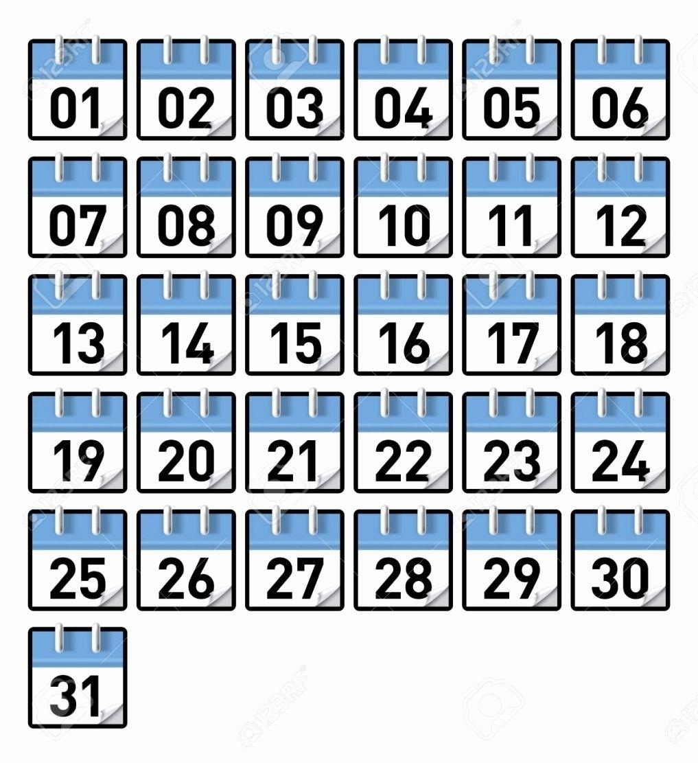 Collect Preschool Numbers 1-31