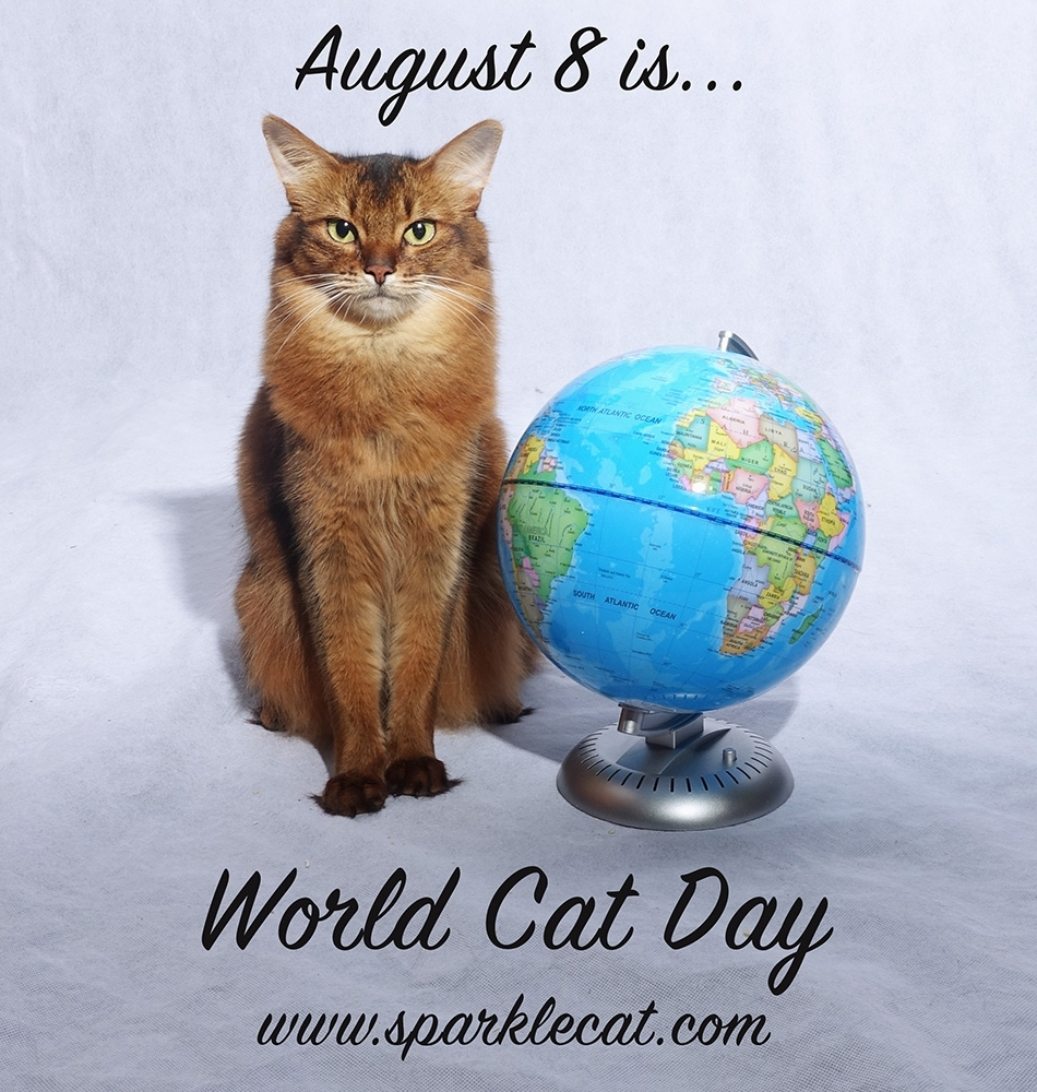 Get August 8 Cat Day