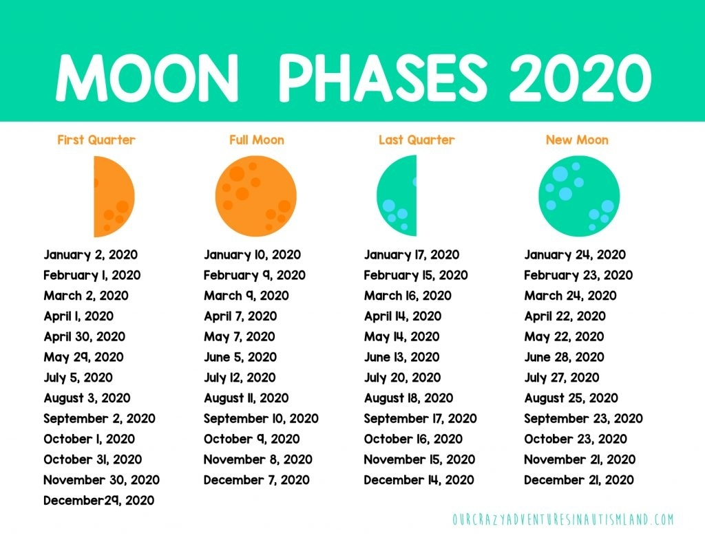 Pick Moon Cycle Calendar Print