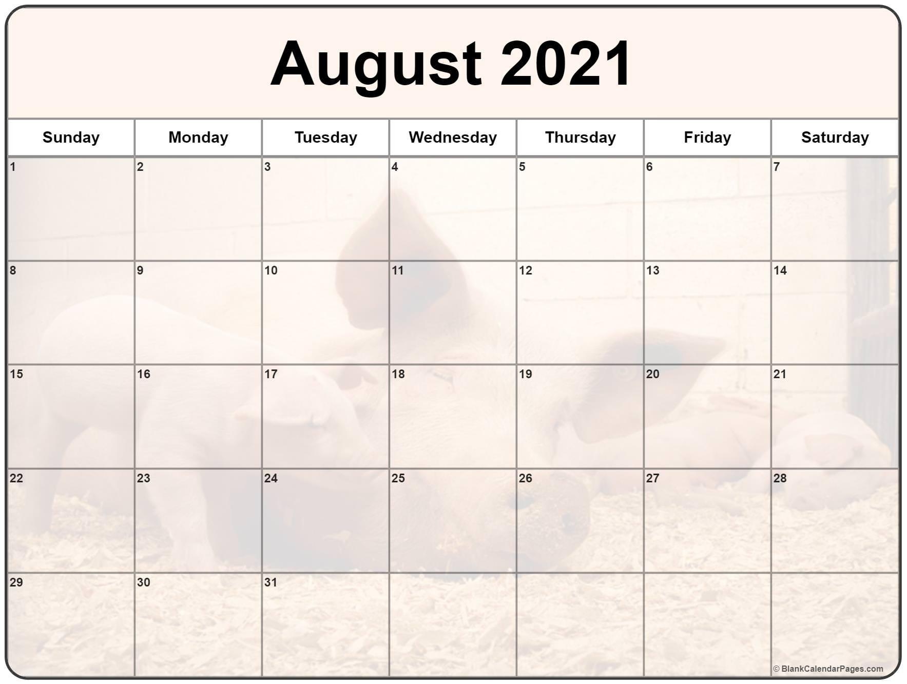 Take Cute 2021 August Calender