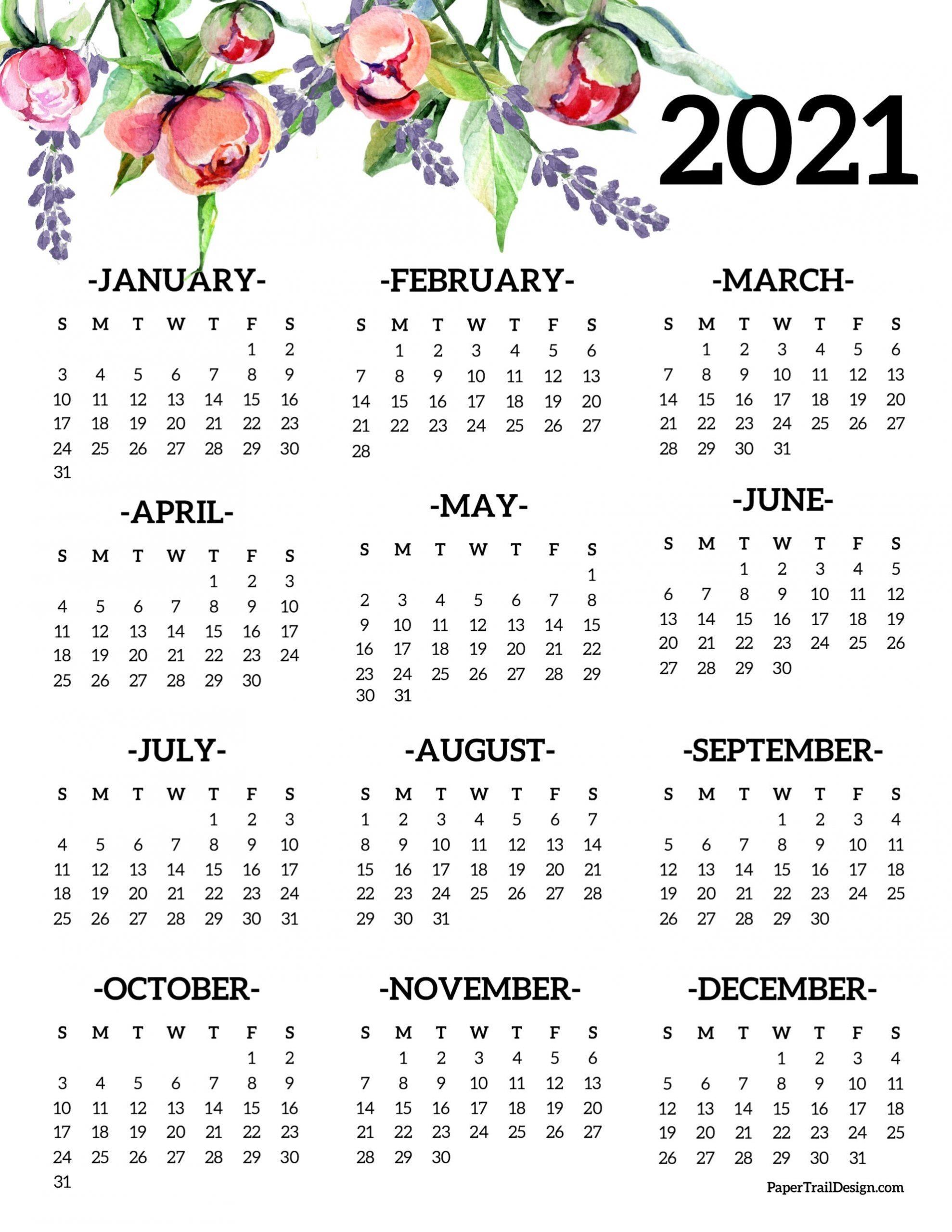 Take Year At A Glance Calendar 2021 Free Printable