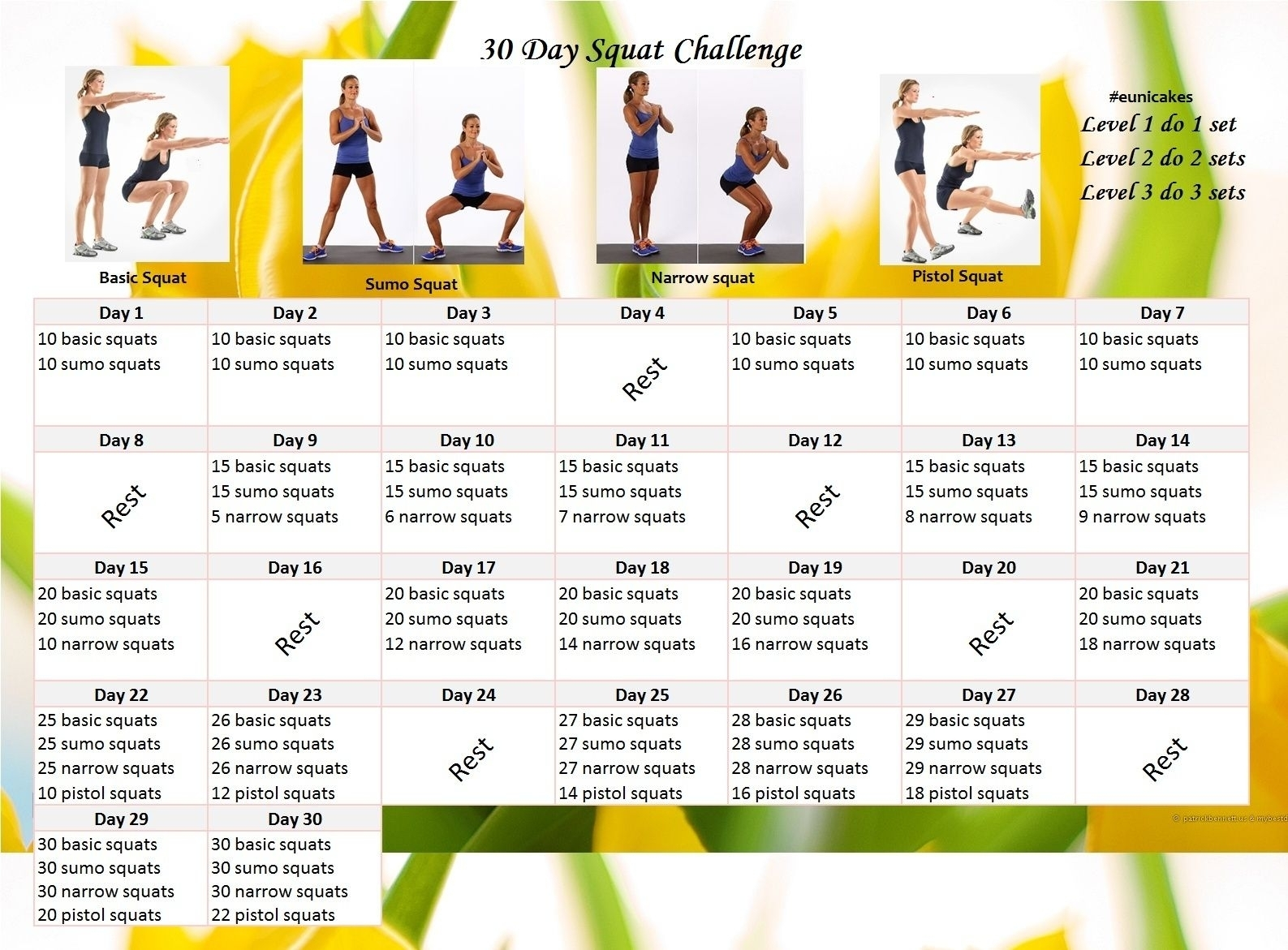 Get 30 Day Fitness Challenge Printable